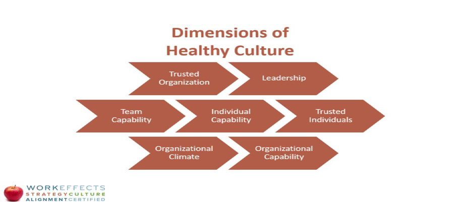 dimensions of a healthy culture
